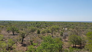 KNP Landscape