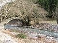 Karpenisi, Greece - panoramio.jpg