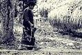 Kasih ibu - Hadiah Khas Juri (4077627632).jpg