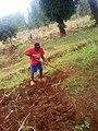 Kenya farm.jpg