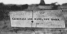 "Sign that Kehoe made and left on a fence at his farm, black lettering on a white painted board – ""Criminals are made, not born."""
