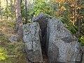 Kivi,Latokartanonkaari,Viikki - panoramio.jpg