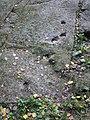 Kivistön päiväkodin kuppikallio - Kivistön päiväkodin leikkipiha, Moreenitie 39 - Kivistö - Vantaa - 2.jpg