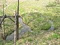Klenovský rybník.jpg