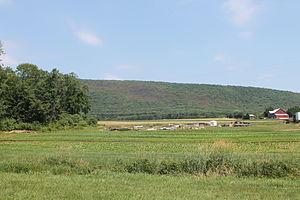 Briar Creek Township, Columbia County, Pennsylvania - Knob Mountain rising above Briar Creek Township