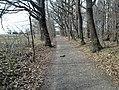 Kopřivnice, Paseky, cesta - panoramio.jpg