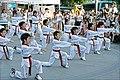 Korea Insadon Taekwondo 12 (7877454340).jpg