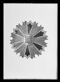 Kraschan, 1 kl. av koreanska orden De åtta elementen - Livrustkammaren - 1504.tif
