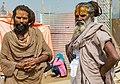 Kumbh Mela 2019, India (32326807537).jpg