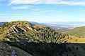La Dôle - panoramio (85).jpg