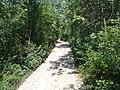 La strada per i sentieri del parco sopra bovezzo - panoramio (1).jpg