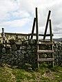 Ladder stile on St.Cuthbert's Way near Wideopen Hill - geograph.org.uk - 409923.jpg