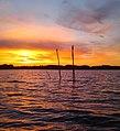 Lago di Chiusi al tramonto.jpg