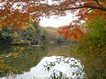 Lake.Shinseiko0.JPG