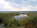 Lake Yalpuh, Bolgrad 1.jpg