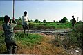 Land Measurement - Science City Site - Dhapa - Calcutta 1993-12-06 142.JPG