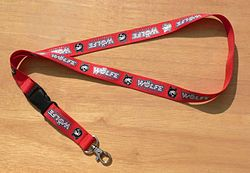 meaning of lanyard