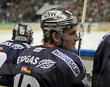 Description de l'image Laurin Braun Eisbaeren Berlin.jpg.
