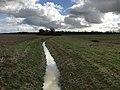 Le Morbier (rivière) à Civrieux (route de Saint-André-de-Corcy) - 2.JPG