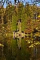 Le grand escalier sous le soleil d'automne (22134659353).jpg