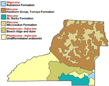 Geological make-up of Leon County