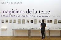Les magiciens de la terre, retour sur une exposition légendaire (Centre Pompidou) (15001231780).jpg