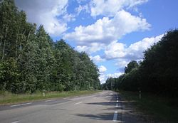 Lithuanian Road 117.JPG