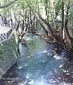 Livadia 321 00, Greece - panoramio (14).jpg