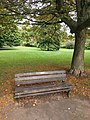Long shot of the bench (OpenBenches 124-1).jpg