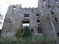 Ludlow Castle - geograph.org.uk - 1246994.jpg