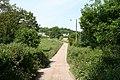 Luppitt, lane to Shapcombe Farm - geograph.org.uk - 187228.jpg