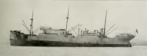 East Asiatic Company - MS Jutlandia
