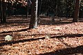 Macedonia African Methodist Church Cemetery, Johns Creek, GA Nov 2017 2.jpg