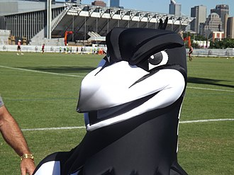 Collingwood Football Club - Collingwood Magpies mascot
