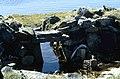 Mallikjuaq Thule site 1 1995-06-19.jpg