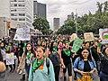 Marcha legalización del aborto 06.jpg