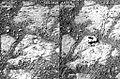 MarsOpportunityRover-MysteryRock-Sol3528-Sol3540.jpg