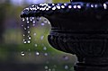 May Showers (17412743565).jpg