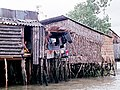Mekong Delta, Vietnam - panoramio (5).jpg