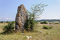 Menhir Fraisse Mas-Saint-Chely causse Mejean.jpg