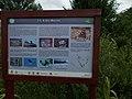 Merzse Marsh Nature Trail, 11th station, 2016 Rákosmente.jpg