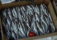 Τα ψάρια είναι πλούσια σε βιταμίνες