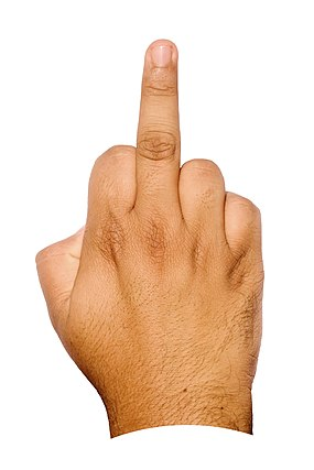 Middle finger BNC.jpg