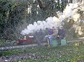 Miniature railway in Prospect Park - geograph.org.uk - 649517.jpg