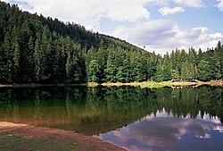 Mizhhirs'kyi district, Zakarpats'ka oblast, Ukraine - panoramio (1).jpg