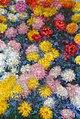 Monet w1498.jpg