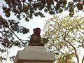 Monkey on park.jpg