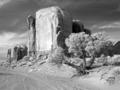 Monument Valley, Arizona LCCN2010630325.tif