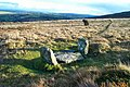 Monument to a stone circle - Dartmoor - geograph.org.uk - 149805.jpg