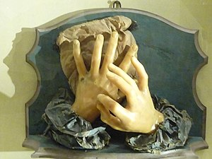 Anna Morandi Manzolini - Image: Morandi hands